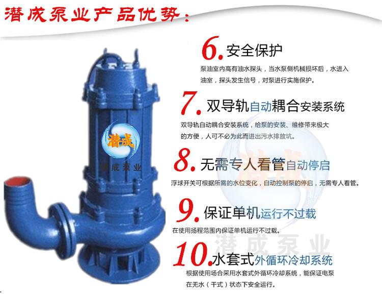 污水污物潜水泵厂家|天津污水污物潜水泵厂家|潜水轴流泵选型